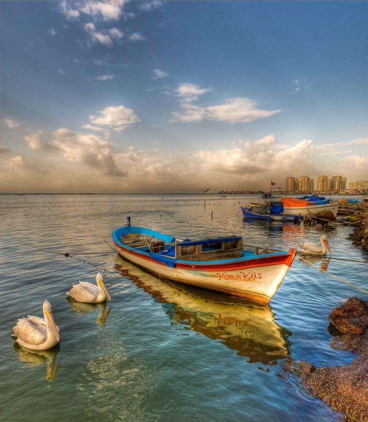 Pelican Time, Mavişehir, Izmir, Turkey By Nejdet Duzen
