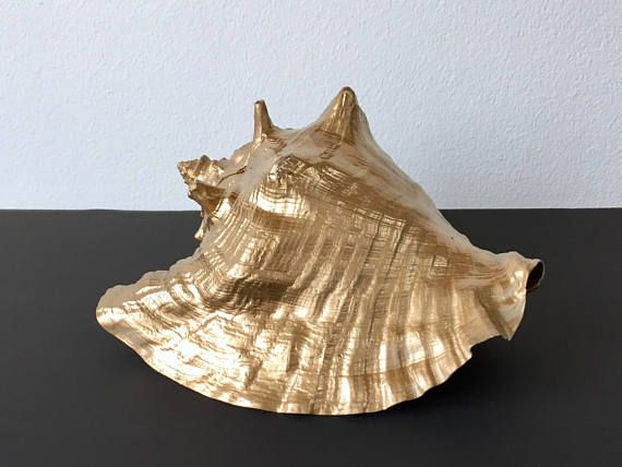 Gold Dipped Authentic Conch Shell - authentic real from the ocean conch shell - painted a shiny gold color  Measures: 9.75 long 5.4 tall 8 deep  CONDITION REFERENCE CHART RATING: Pristine Imperfections in the shell add to its beauty. Shipping: will fit in domestic flat rate USPS box, anywhere in the US for $13.60. Thanks for looking and check out my other listings at: https://www.etsy.com/shop/RachaelsRealm?ref=hdr_shop_menu  RACHAELS GIVES 10% TO A LOCAL NONPROFIT. M...
