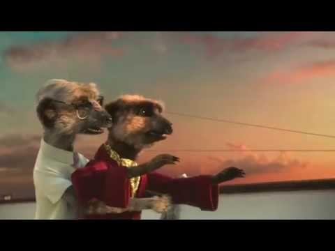 Compare the Meerkat - Advert 66