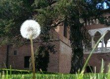 100 de locuri din Bucuresti Palatul Mogosoaia -