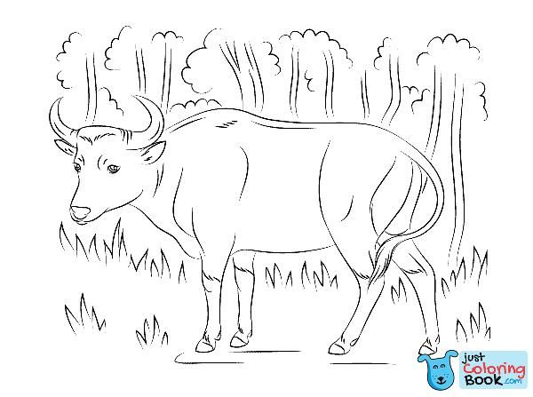 Banteng Coloring Page Free Printable Coloring Pages With Banteng