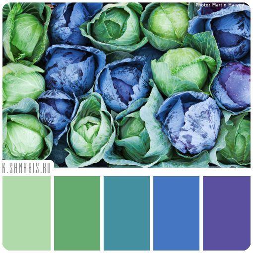 Цвета палитры: нежно-зеленый, светло-зеленый, сине-зеленый, голубой, сине-фиолетовый Общая характеристика палитры: спокойная, освежающая, манящая, пробуждающая
