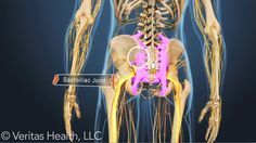 The sacroiliac (SI) joints that join the spine to the pelvis can cause pain and inflammation when they're affected by arthritis. Find out what types are prone to cause SI joint pain.