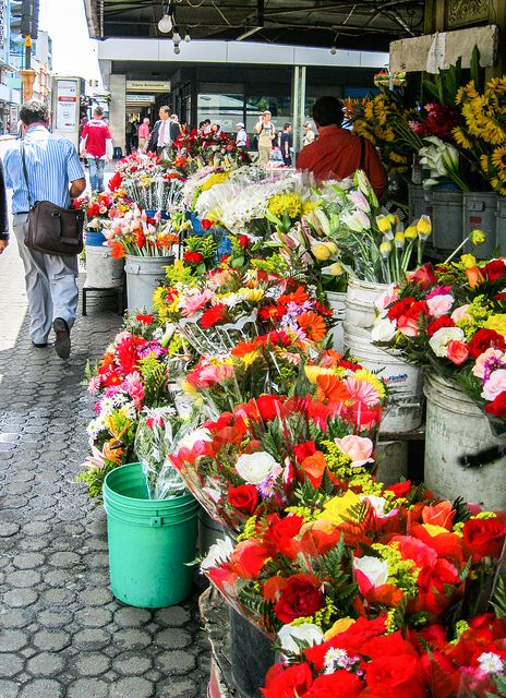Flower Market, San Jose. https://www.facebook.com/International.Living