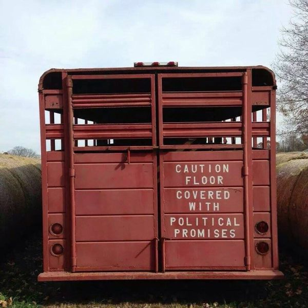 STRANGE FARM & RANCH WISDOM - MESSAGE ON THE REAR OF A HORSE TRAILER TELLS IT ALL!