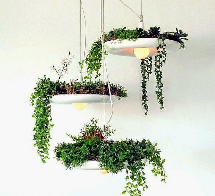 HOME & GARDEN: Un petit oasis au dessus de nos têtes : Le lustre jardinière !