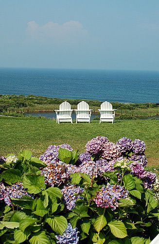 Hydrangeas on beautiful Block Island, Rhode Island - I would love to be sitting in one of those chairs right now.