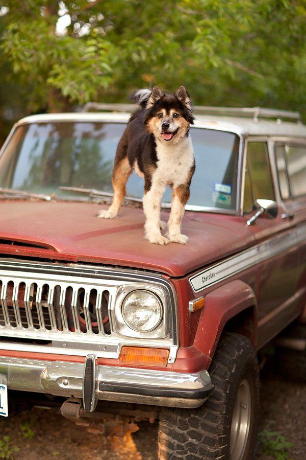 Vintage Jeep Cherokee.
