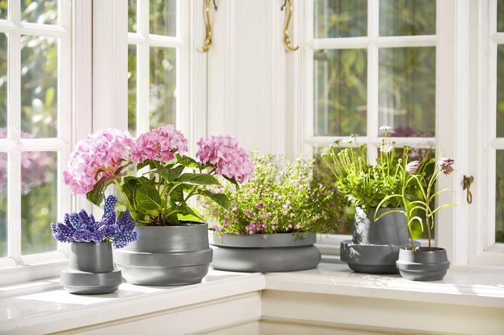 Get the spring feeling inside with • Hinken pots • Designed by Silje Nesdal & Ann Kristin Einarsen #flowerpots #flowers #pots #spring #accessories #ceramic #norwegian #design #WOUDdesign