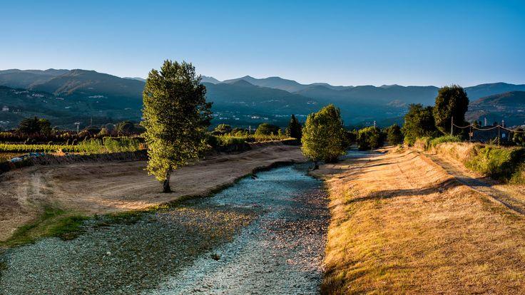 Ombrone river in Tuscany - Ombrone river in Tuscany