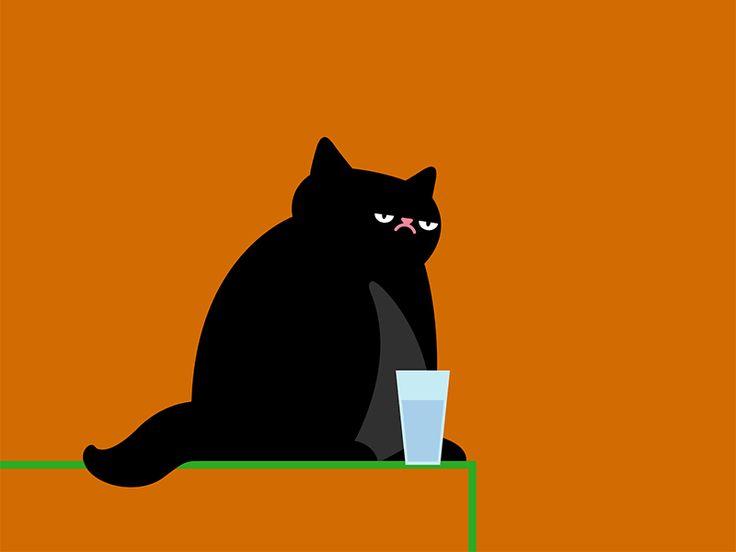 Cat dribbble