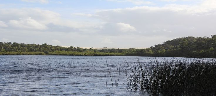 Yeagarup Lake - Just down the road from Marima Cottages