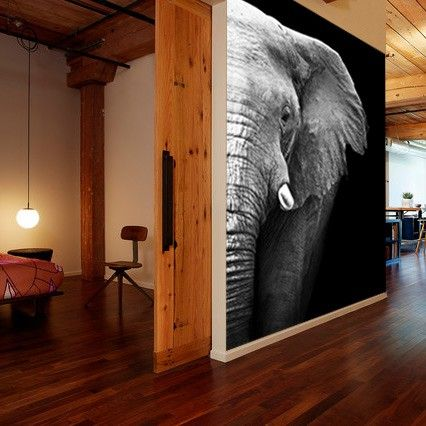 ANIMAL-  Vlies fotobehang Olifant Close-up | Muurmode.nl
