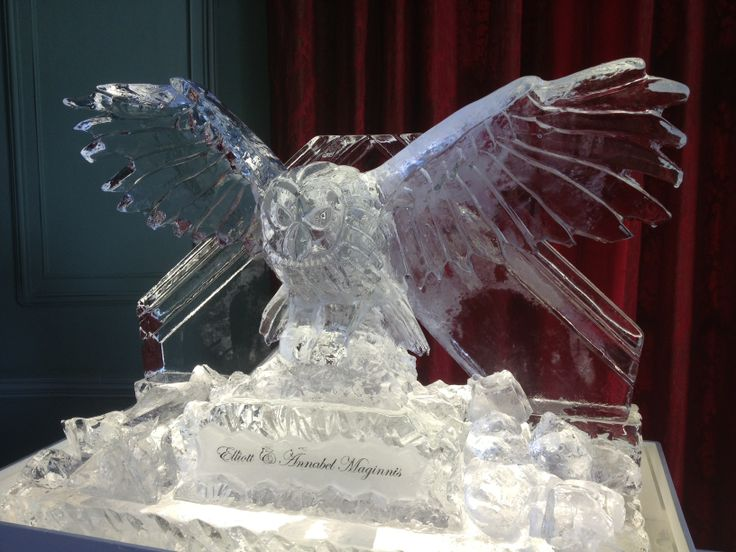 Hand carved ice owl with double luge. Ideal for any wedding or special occasion.