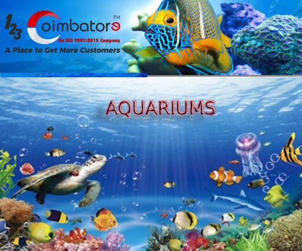 Fish Farms Aquarium Shops And Wholesale Dealers In Coimbatore Fish Farming Aquarium Shop Aquarium