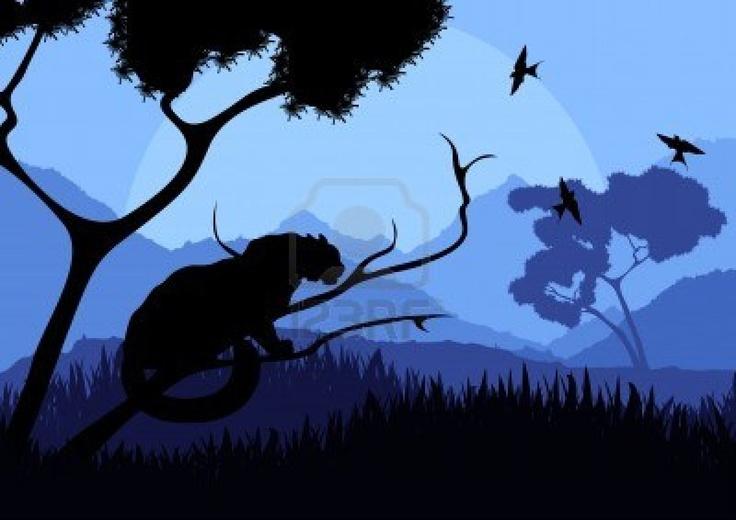 Chat sauvage dans l'illustration nature paysage sauvage Banque d'images