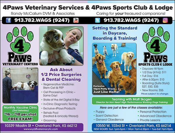 4 Paws Veterinary Group Wycliff Animal Clinic Ipetskc Veterinary Services Indoor Dog Park Pet Clinic