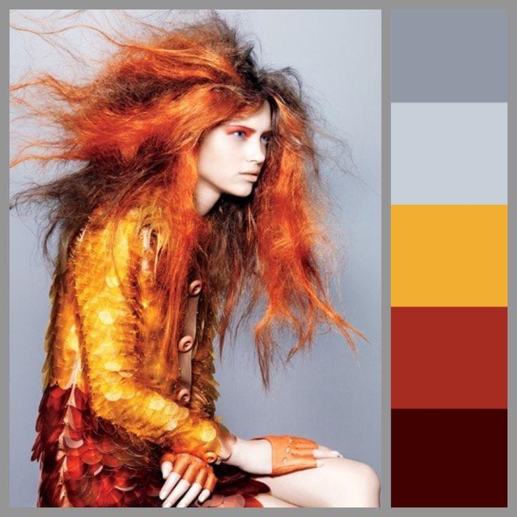 Color Scheme Bold Orange Gray Fashion Modern Avantgarde