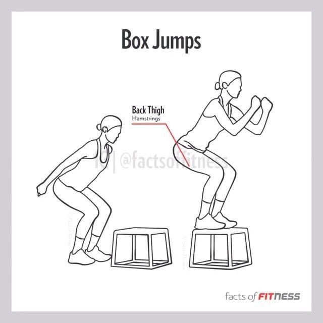 Box Jumps  #workout