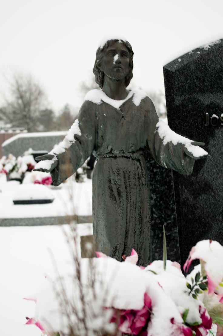Cette image a été prise dans le cimetière d'Ascq cet hiver 2012-13 après de fortes chutes de neige.