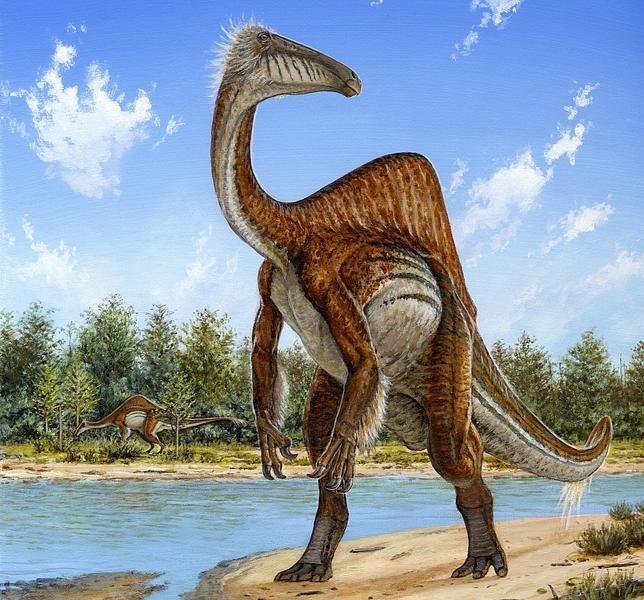 Resuelto el misterio del dinosaurio de las «manos horribles» http://w.abc.es/8svjb9