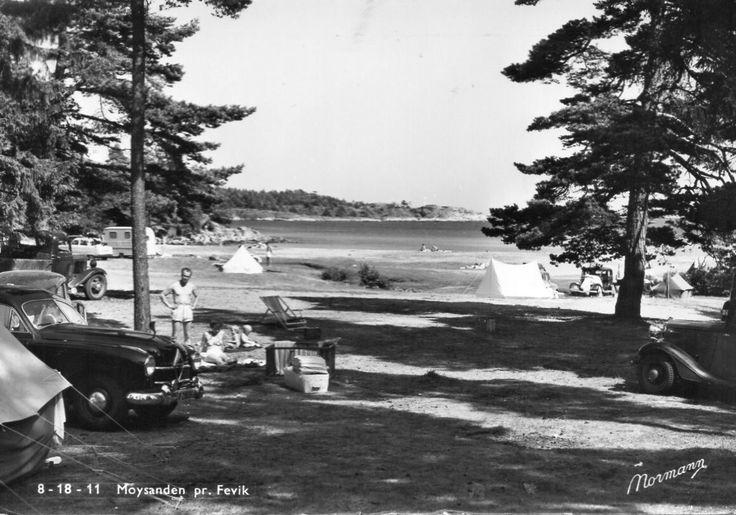 Aust-Agder fylke Grimstad kommune MOYSANDEN Camping , FEVIK. BILER OG TELT. Utg Normann 1950-tallet