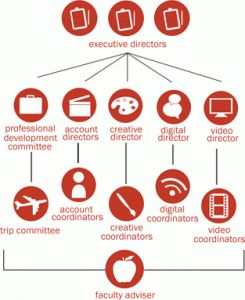 Agency Org Chart