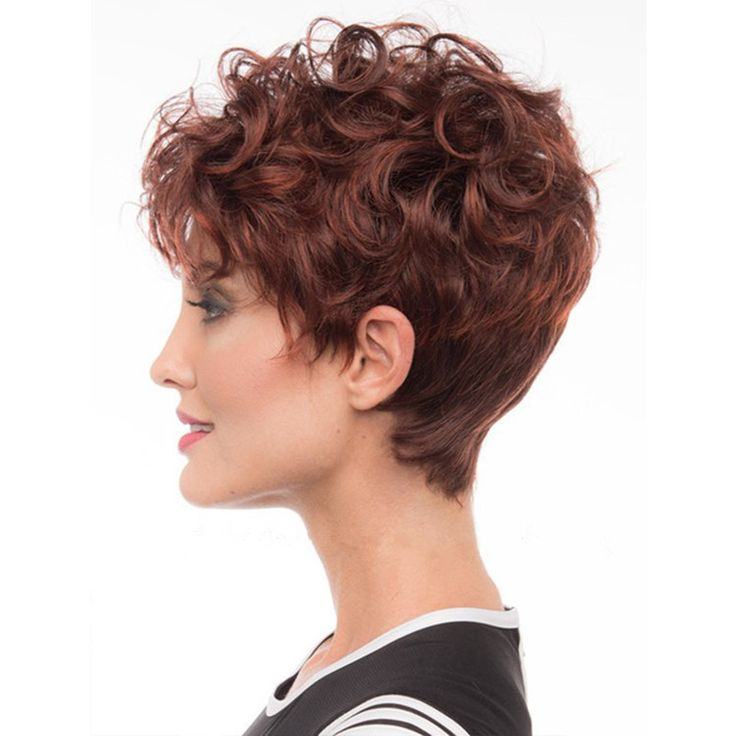High quality Synthetic Weavy Hair Wig Women 's Naturally Curly Short  Wigs Brown Red Wigs Free Shipping