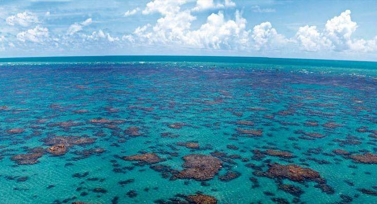 6 piscinas naturais do nordeste que farão você se sentir no Caribe   – Places