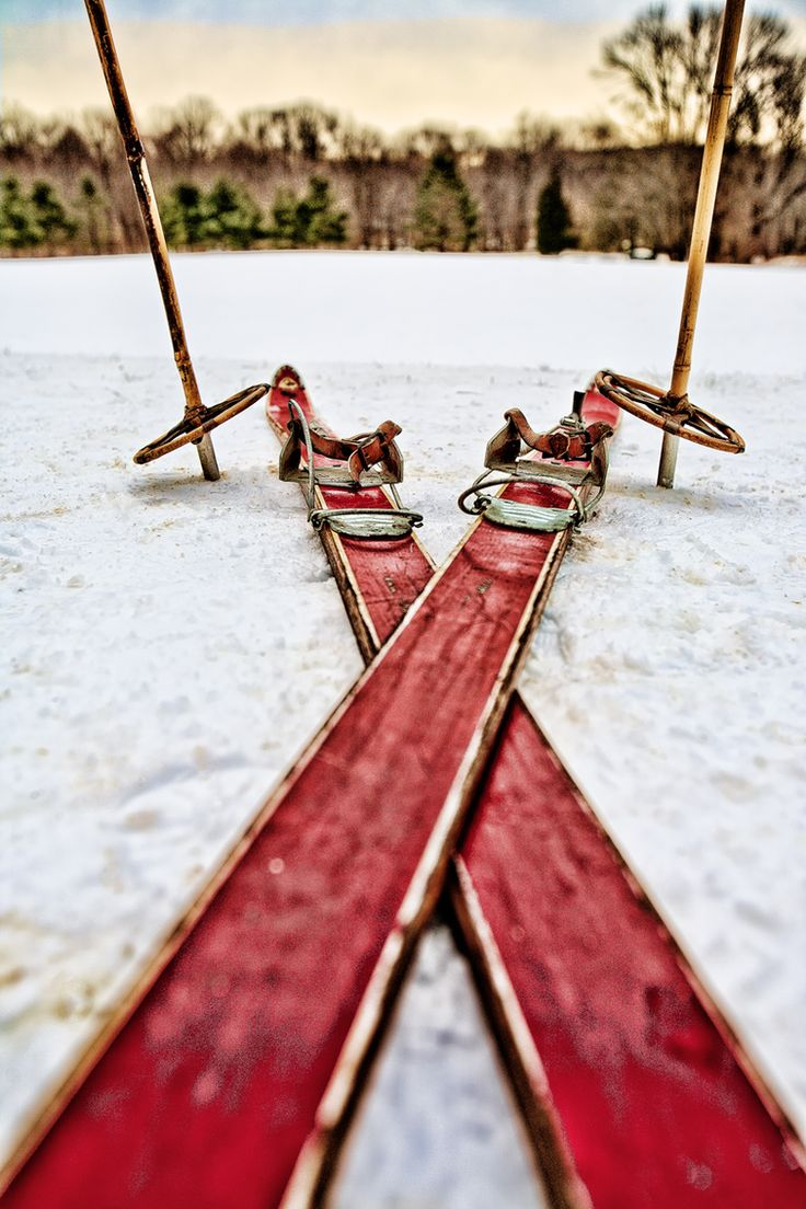 Vintage skis, by Jon MuzzarelliWinter Snow, Red, Snow Ski, Seasons, Pattern Design, Winter Wonderland, Cross Country, Vintage Ski, Crosses Country Ski