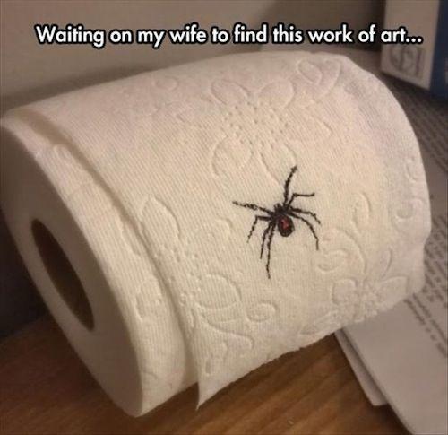 halloween pranks spider toliet paper