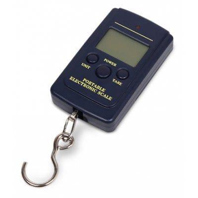High Precision Portable Scale Electronic Balance