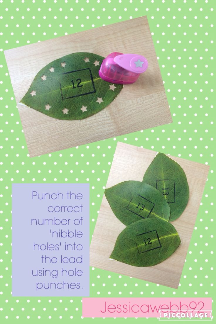 Punch the correct number of munch holes into the leaves. EYFS