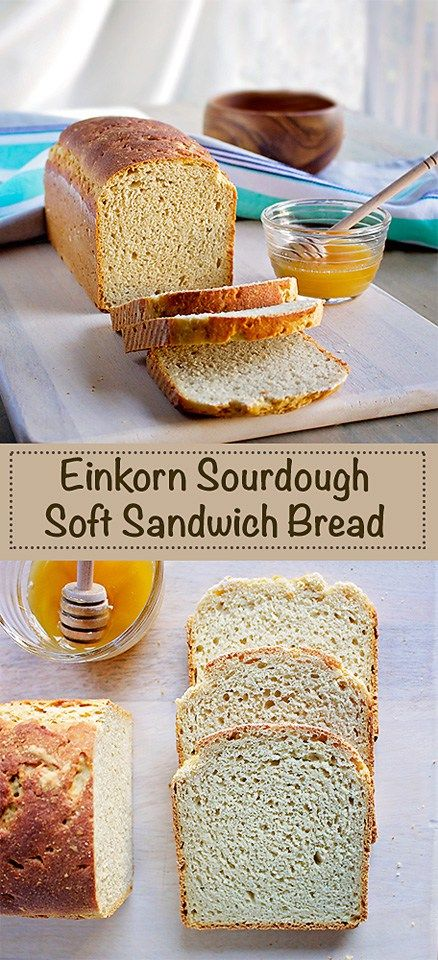 Recipe for all-purpose einkorn sourdough sandwich bread made with honey and a…