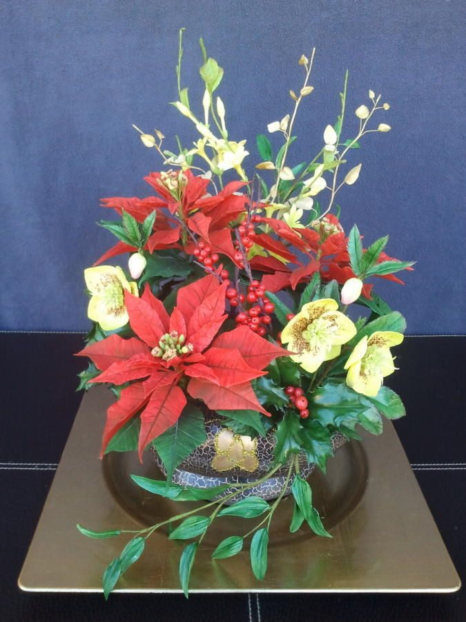 Poinsettia christmas roses winter jazmin holly and ilex