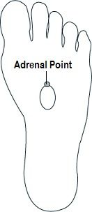 Reflexology for Adrenal Glands.. balancedwomensblog.com