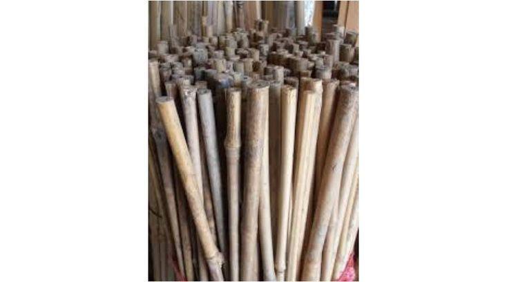 Bambusz karók,BAMBUSZ KARÓ 60 CM HOSSZÚ / 6-8 MM ÁTMÉRŐ ( 6 db/csomag )