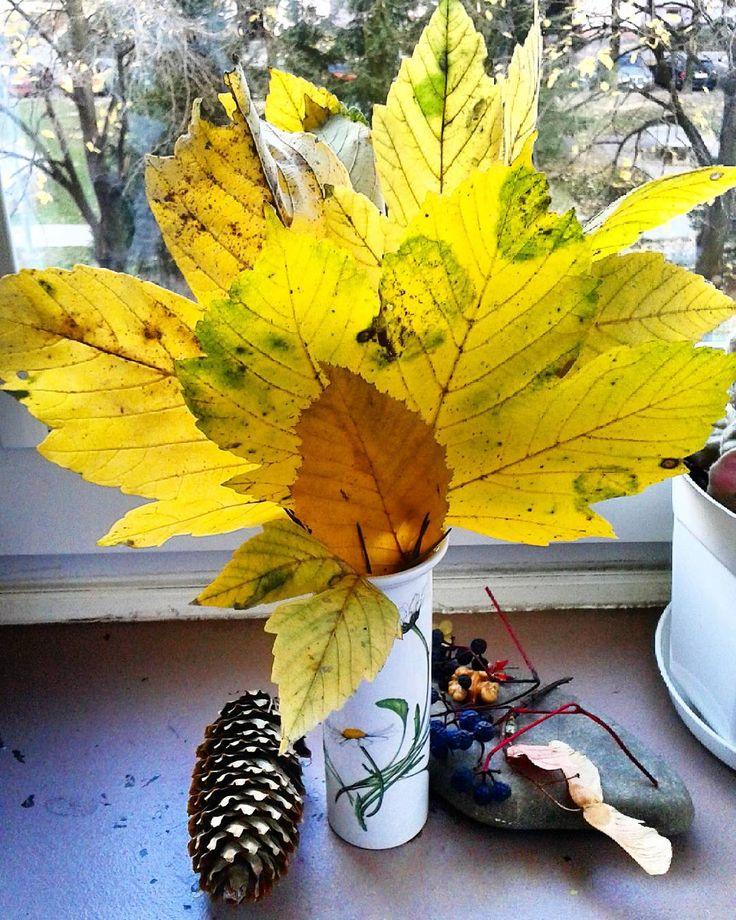 Dawno nie było bukietu. Więc jest  żółciutki z plamkami zieleni.Dzisiejszy zbiór.#bukiet #liście #bouquet #leafes