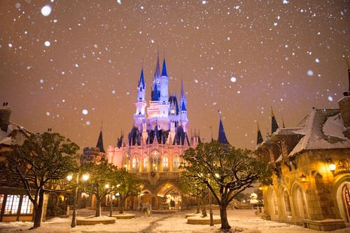 Real Snow at Tokyo Disneyland (discovered post)