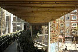 El Jardín Vertical de Delicias afronta su primer lavado de cara desde su construcción en 2008. Parques y Jardines realiza el mantenimiento de las plantas con su poda y fumigación. La colaboración vecinal comenzará el fin de semana con una limpieza a fondo centrada en la eliminación de pintadas con agua a presión. 9 de abril