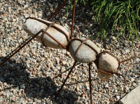 Deanne Clemens has big ants!