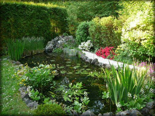 17 best ideas about bassin d eau on pinterest fontaine d for Bassin aquatique jardin