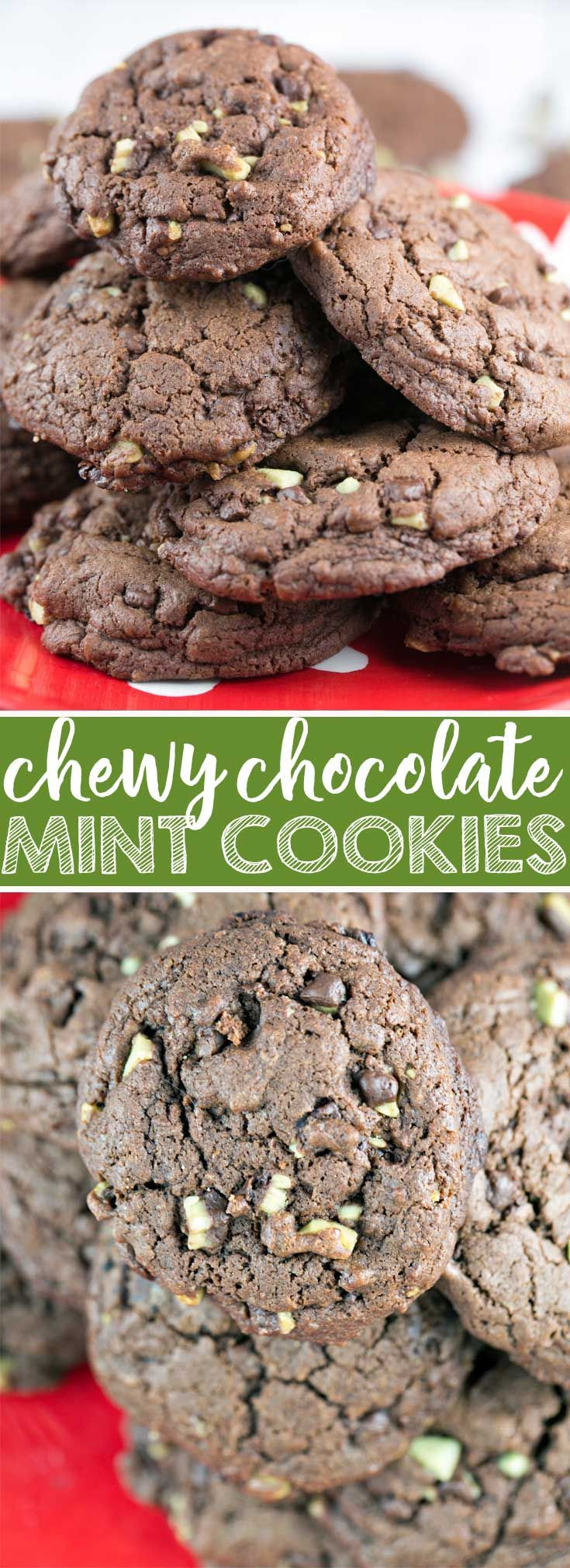 Chewy Chocolate Mint Cookies: If you like your cookies chewy and chocolatey, these cookies have your name written all over them! Made with melted chocolate and brown sugar, they're the ideal cookie for dunking in a big glass of milk. {Bunsen Burner Bakery} #cookies #christmascookies #mint #chocolatemint via @bnsnbrnrbakery