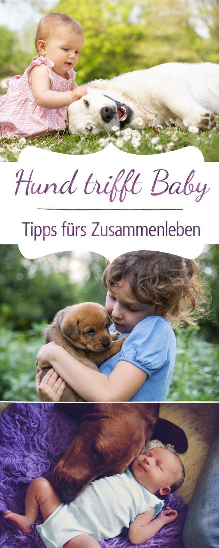Damit Hund und Nachwuchs auch gute Freunde werden!