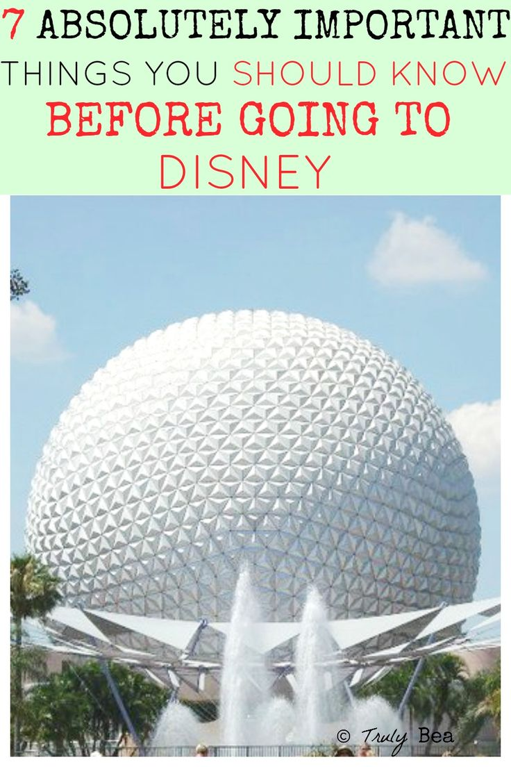 7 Absolutely Important Things You Should Know Before Going to Disney. Wow excellent article. Must pin if you are going to go or ever will go to Disney. Number 2, 5, and 7 are so TRUE. Glad I pinned!!