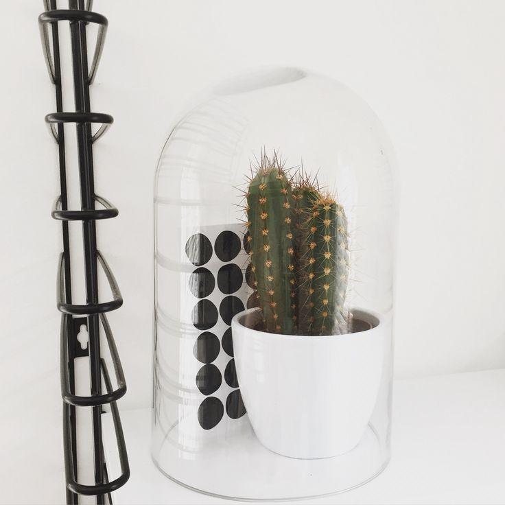 17 beste idee n over de stolp op pinterest sylvia plath literatuur en hartslag - Foto decoratie ...