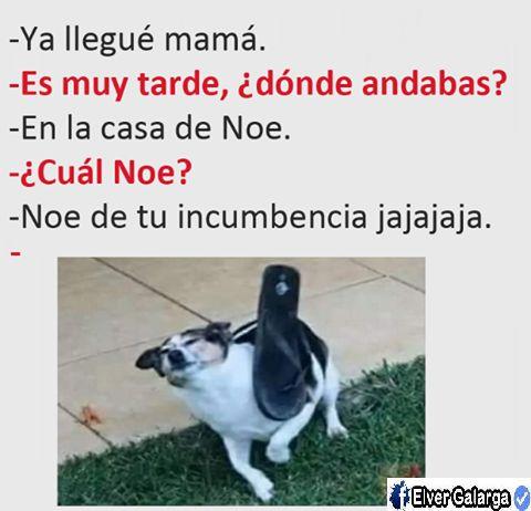 memes-para-whatsapp-graciosos-9