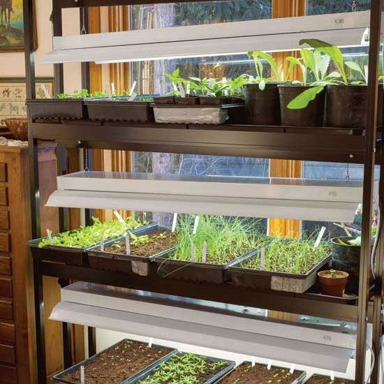 Best Grow Lights for Starting Seeds Indoors (Video) - Organic Gardening - MOTHER EARTH NEWS