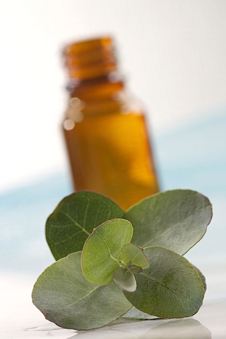 *AND*     Top 25 Peppermint Oil Uses and Benefits  http://draxe.com/peppermint-oil-uses-benefits/#