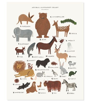 "Animal alphabet chart: Print by Anna Bond for Rifle Paper Co. (11""x14"", $40.00) #illustration #animal #abc"